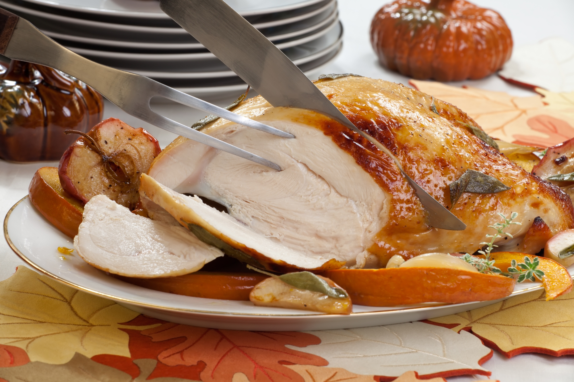 turkey breast - hi res